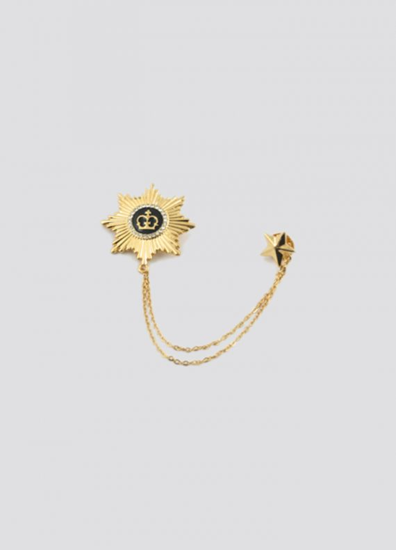 Gold Chain Pin